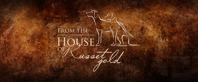 from the House of Russet Gold